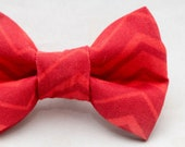 Dapper Cat Red Zig Zag Pattern Cat Bow Tie