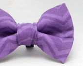 Dapper Cat Purple Chevron Stripes Pattern Cat Bow Tie
