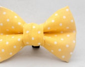 Dapper Cat Yellow and White Polka Dot Pattern Cat Bow Tie
