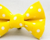 Dapper Cat Yellow and White Large Polka Dot Pattern Cat Bow Tie