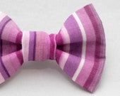 Dapper Cat Purple Stripes Pattern Cat Bow Tie