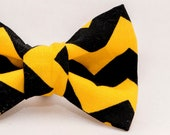 Black and Gold Chevron - Iowa Hawkeyes Cat Bow Ties