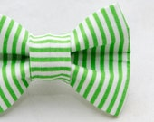Dapper Cat Green Candy Cane Striped Pattern Cat Bow Tie