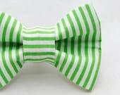 Dapper Cat Green Candy Cane Striped Pattern Cat Bow Tie