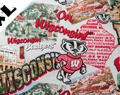 WI Badgers XL Refillable Catnip Mat