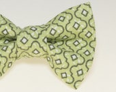 Dapper Cat Green & White Pattern Cat Bow Tie