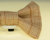 Dapper Cat Fall Colors Plaid Pattern Cat Bow Tie