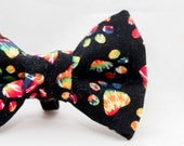 Rainbow Paws Cat Bow Tie