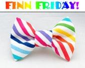 FINN FRIDAY Diagonal Rainbow Stripes Dapper Cat Bow Tie
