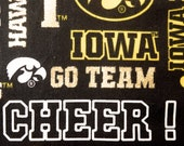 Iowa Hawkeyes Refillable Catnip Mat