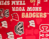 UW Badgers Refillable Catnip Mat