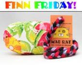 FINN FRIDAY Rainbow Fruit Pattern MadRat Catnip Stuffed Cat Toy