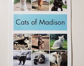 Cats of Madison Book