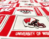 Wisconsin Badgers Football Refillable Catnip Mat