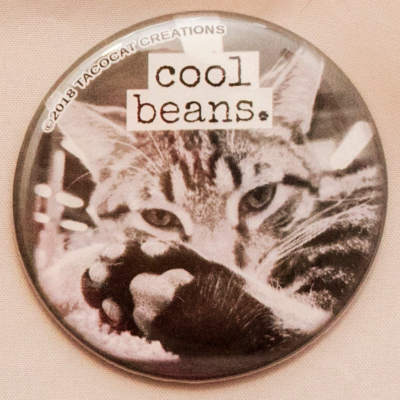 Cool Beans  Cat Magnets and Buttons   Different sizes image 0