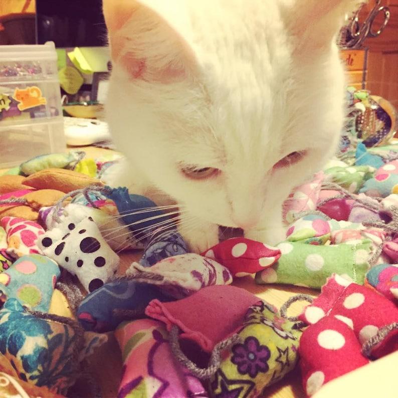 MewMice  Fully-Stuffed Mini Catnip Toys  Various Patterns image 0