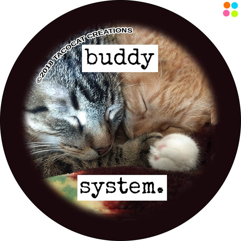 Buddy System  Cat Magnets and Buttons   Different sizes image 0