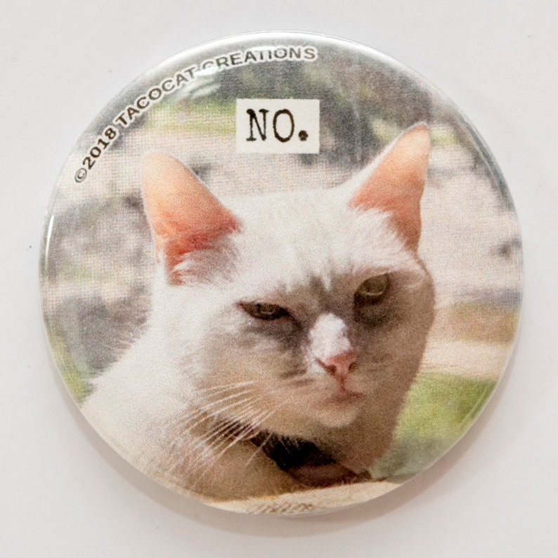 No  Cat Magnets and Buttons   Different sizes available image 0