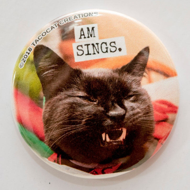 Am Sings  Cat Magnets and Buttons   Different sizes image 0