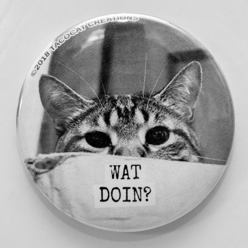 Wat Doin  Cat Magnets and Buttons   Different sizes image 0