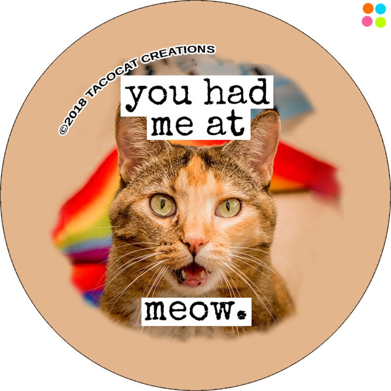 You had me at meow  Cat Magnets and Buttons   Different image 0