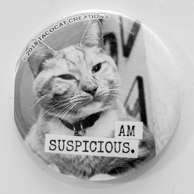 Am Suspicious  Cat Magnets and Buttons   Different sizes image 0