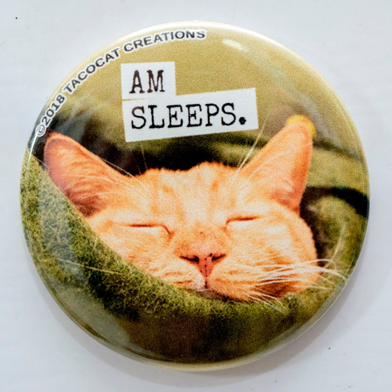Am Sleeps  Cat Magnets and Buttons   Different sizes image 0