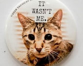 It Wasn't Me - Cat Magnets and Buttons -  Different sizes available!
