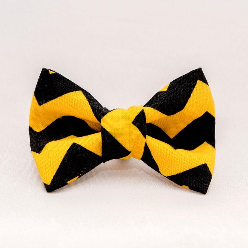 Black and Gold Chevron  Iowa Hawkeyes Cat Bow Ties image 0
