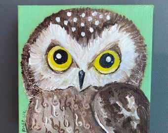 Saw Whet Owl square acrylic painting