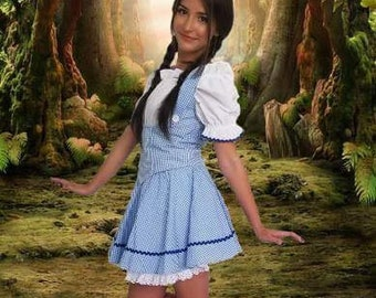 ff34d7d56ce Sexy Dorothy Inspired Adult Costume