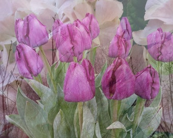 Purple Tulips, photo notecard
