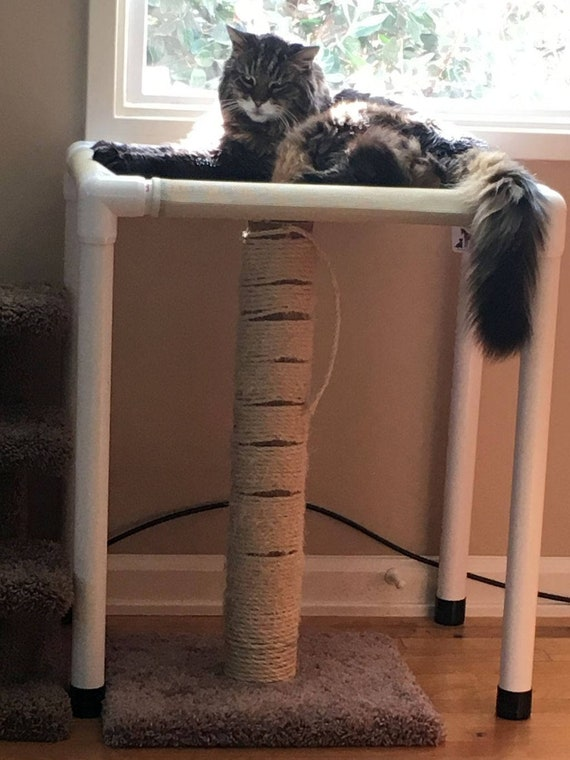 Cat Hammock 22X30 Kitty Perch Cat Window Bed Pet Hammocks | Etsy