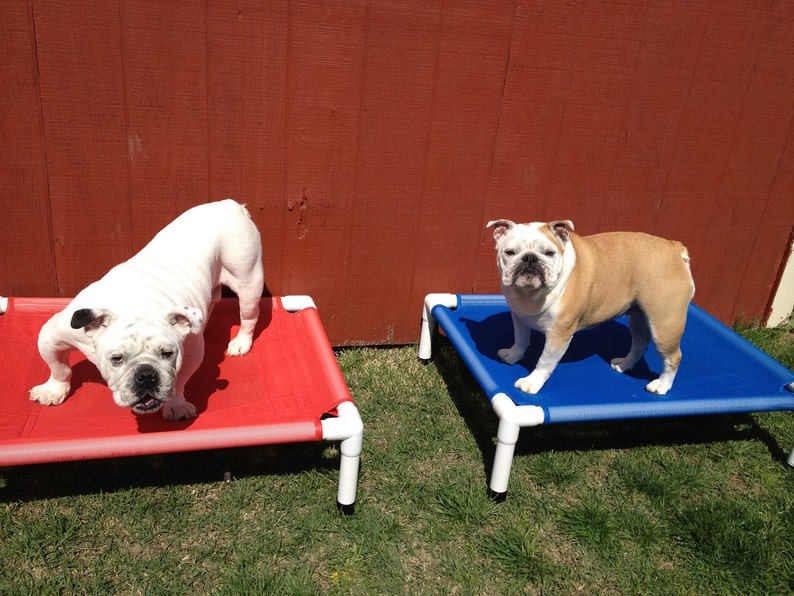 edc8ea68ddf3 Dog Bed 11 Colors 28x36 Mesh Pet Screen Dog Beds For Summer   Etsy
