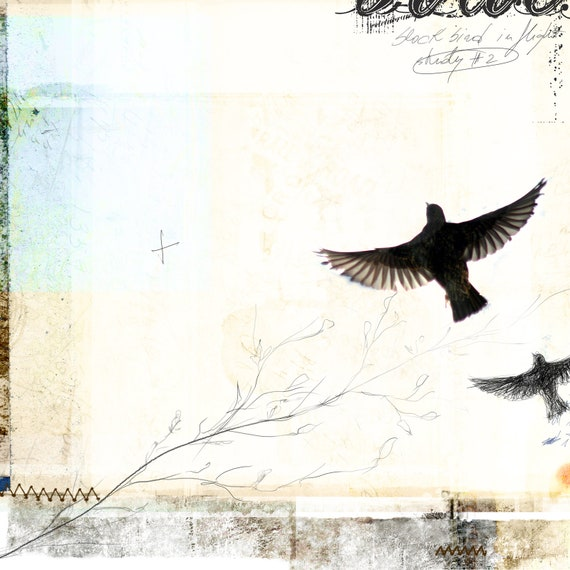 Composition No.4 - giclee print: mixed media and digital illustration on Black Birds