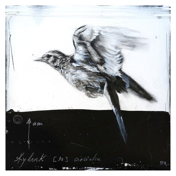 Skylark in flight