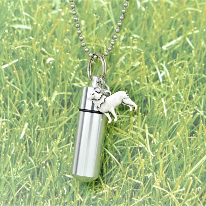 Cylinder Urn with Charm Dog Keepsake Jewelry Border Collie Ashes Holder Necklace