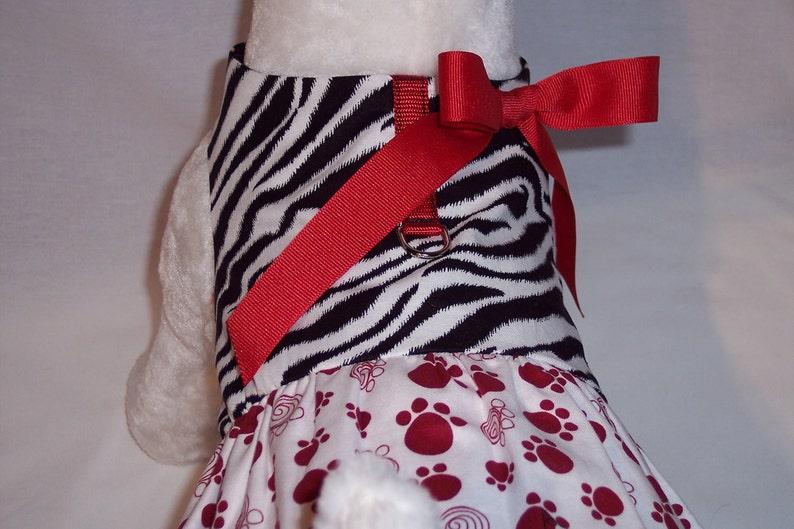 HARNESS PET DRESS Zebra Print With Paw Print Skirt