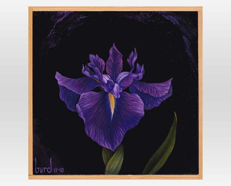 Bellender Blue Iris  Original Oil Painting on Wood 8x8 image 0