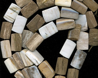 """Petrified Wood Beads Choose From Warm Toned Tapered Rectangles 16"""" Strand All Natural"""