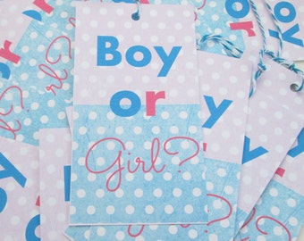 Gender Reveal Gift Tags
