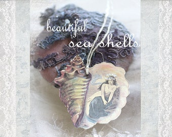 the mermaid within - beautiful seashell art tags