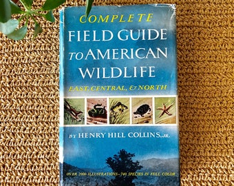 Field Guide to American Wildlife