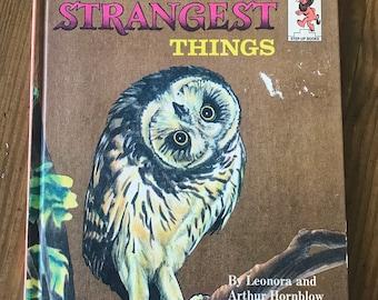Birds Do the Strangest Things - Vintage Children's Books