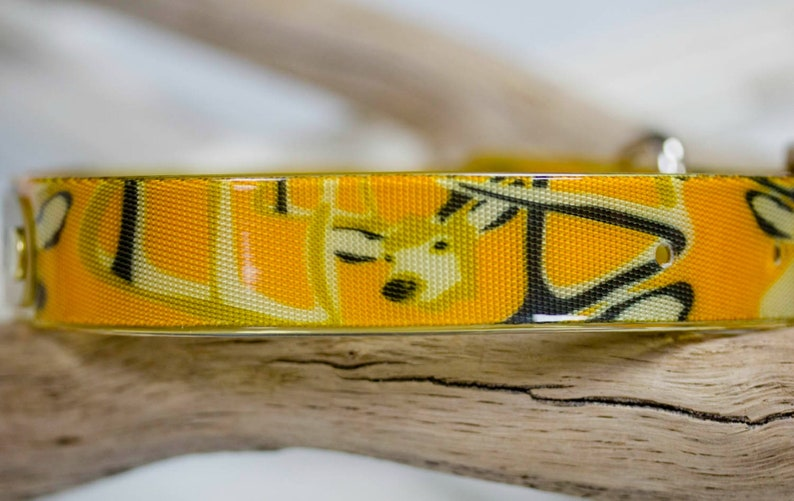 Swimming Collar Waterproof Dog Collar w Engraved NAMEPLATE Hunting Dog Dirt Resistant Sporting Dog Leather Alternative StinkProof