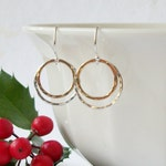 Silver Gold Circle Earrings