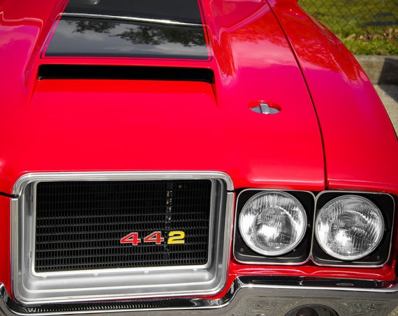 Oldsmobile 442 Red Front End  Fine Art Print or Canvas Gallery Wrap
