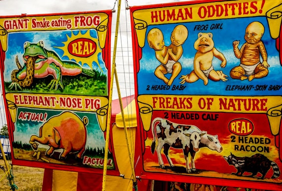 Carnival Oddities 2 Fine Art Print or Canvas Gallery Wrap