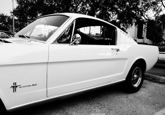 Ford Fastback Mustang Car 1966 Fine Art Print or Canvas Gallery Wrap