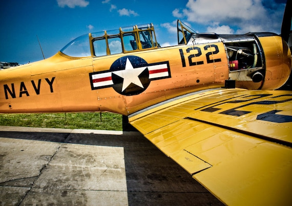 Vintage Airplane 2 Fine Art Print or Canvas Gallery Wrap